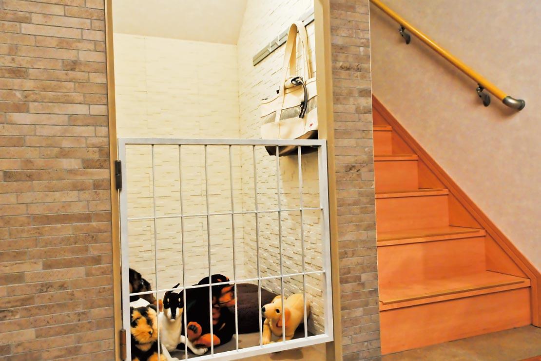 鉄骨系住宅 加古川展示場 内観写真:ドッグスペース